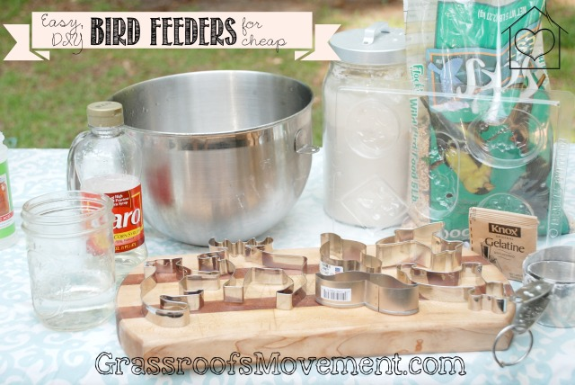 Easy, Cheap, Bird Feeders